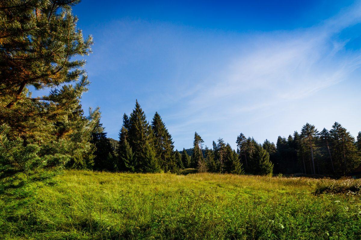 Tri Vody Demänovská Dolina